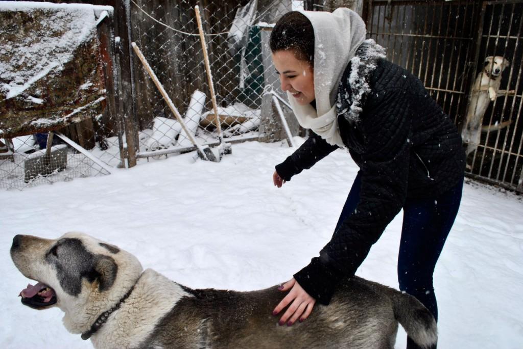 В рамках дисциплины «Экологическое право» студенты факультета посетили приют для бездомных животных «Участие»